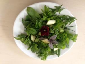 Gārsas salāti