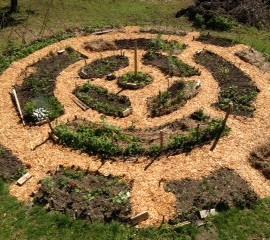 Ikšķiles Brīvās skolas dārzs